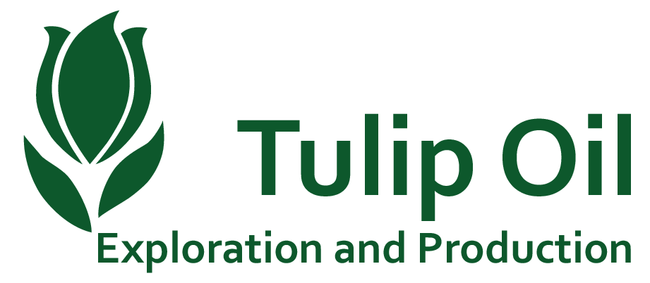 Tulip Oil Exploration and Production